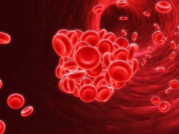 Thiếu sắt gây ra thiếu máu