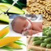 Thực phẩm bổ sung acid folic cho bà bầu giúp ngăn ngừa dị tật bẩm sinh ở thai nhi
