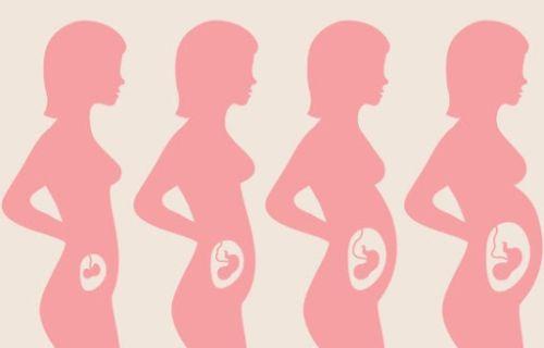 Mang thai 3 tháng đầu uống sắt có bị nóng không?