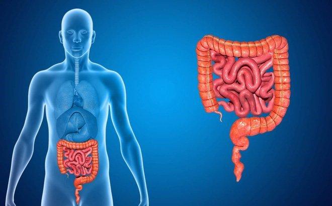 Hiện tượng thiếu máu sau sinh và cách cải thiện nhanh chóng nhất