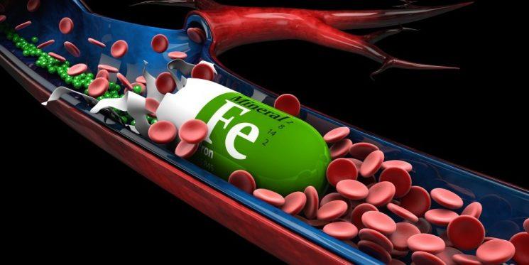 Uống thuốc sắt có tăng cân không? Tại sao?